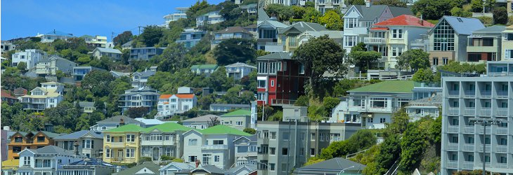 House Rents Wellington Nz How Much Should You Pay