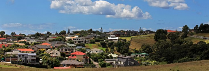 Houses in New Zealand's North Island